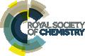 The Royal Society of Chemistry (RSC)